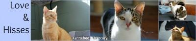 Kennebec & Mercury